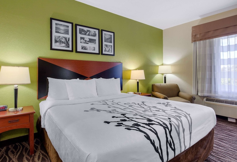 Sleep Inn & Suites Montgomery East I-85, Montgomery, Kamar Standar, 1 Tempat Tidur King, non-smoking, Kamar Tamu