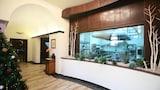 Costa Brava hotels,Costa Brava accommodatie, online Costa Brava hotel-reserveringen