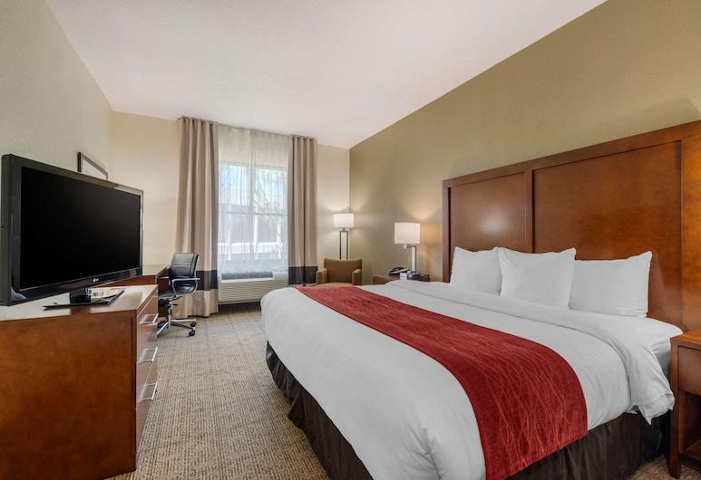 Comfort Inn & Suites Northeast - Gateway, St. Petersburg