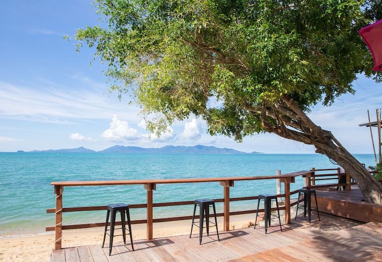 阿達林海灘度假村, 蘇梅島, 酒店酒吧