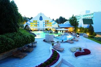 ヘーヴィーズ、ホテル ナトゥールメド カルボナの写真
