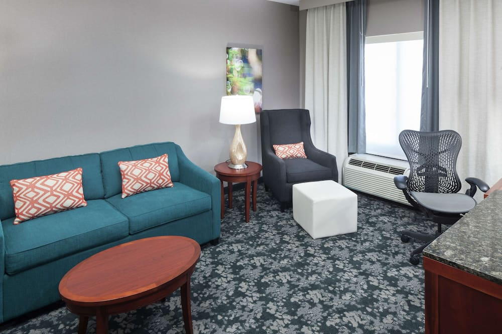 Deluxe Suite, One King Bed - Living Area