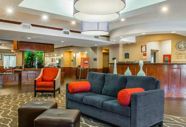 Comfort Suites Near Texas A&M University - Corpus Christi, Corpus Christi, Lobby