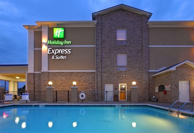 Holiday Inn Express Hotel & Suites Clarksville, Clarksville, Medence
