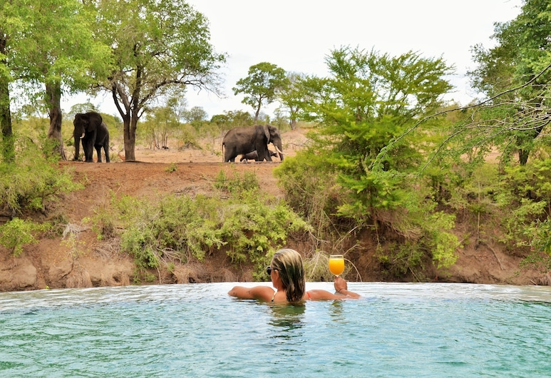 Imbali Safari Lodge, Kruger National Park, Safari