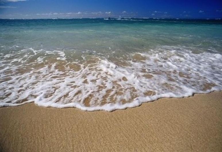 Affordable Executive Getaway - 2 Blocks to Beach & Town W/private Parking, Santa Barbara, Paplūdimys