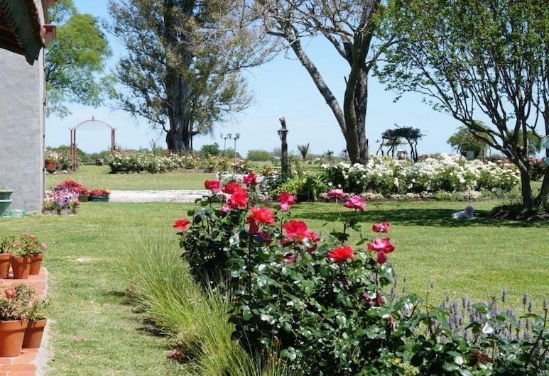 Estancia El Cangüé, Paysandú, Jardín