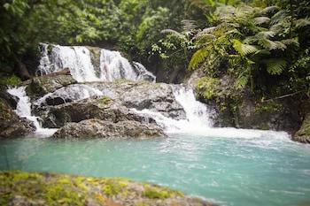 Fotografia hotela (Naguala Jungle Lodge) v meste Drake Bay