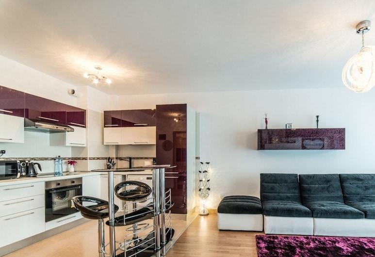 RED HOTEL ACCOMMODATION, Cluj-Napoca, Deluxe Apart Daire, 1 Büyük (Queen) Boy Yatak ve Çekyat, Oturma Odası