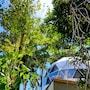 Chira Glamping Monteverde