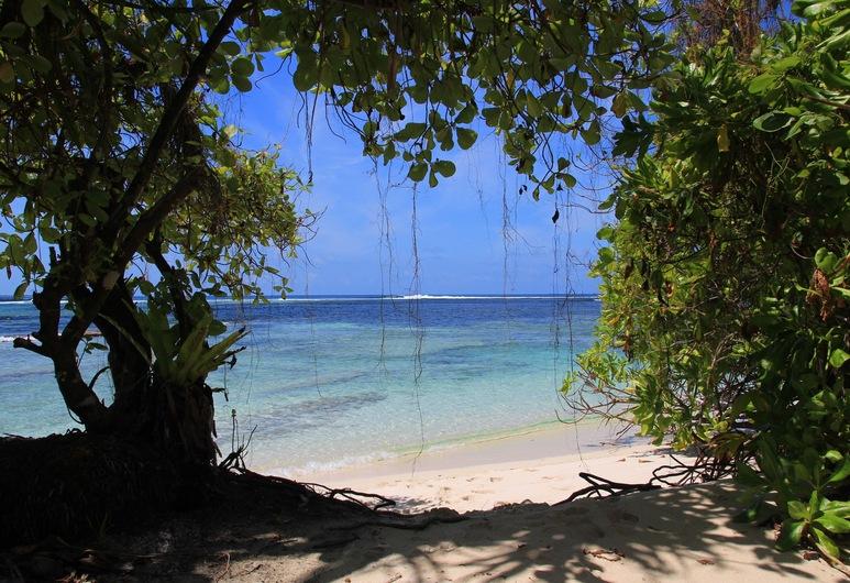 Serene Blue Bowls Surf Inn, Ваадху, Пляж