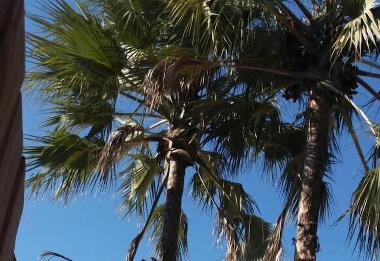ماكجوفانجو لوكشري إن, غوماري, المنطقة المحيطة بالمنشأة