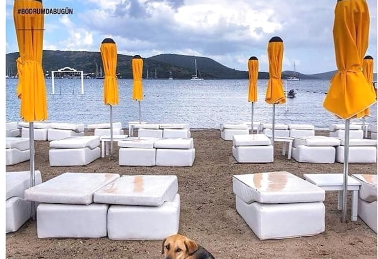 Weekend Bodrum Hotel, Bodrumas, Paplūdimys
