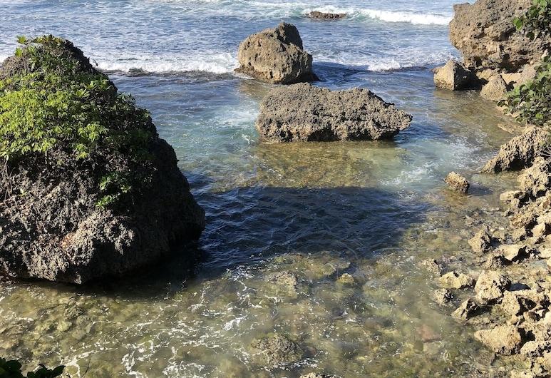 Meerblick und Privater Pool - Westküste Barbados, Holetown, Strand