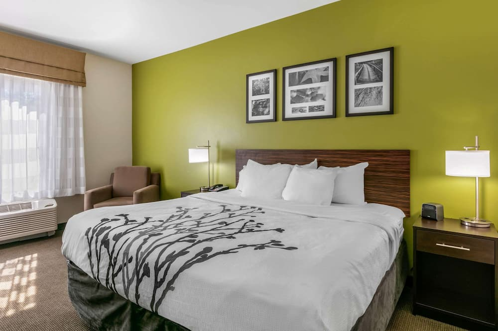 Standard Room, 1 King Bed with Sofa bed, Non Smoking (2 Person Sofa bed) - Guest Room
