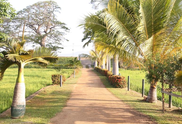 Serene Park Hotel, Tissamaharama, Hotel bejárata