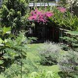 Puutarhanäkymä