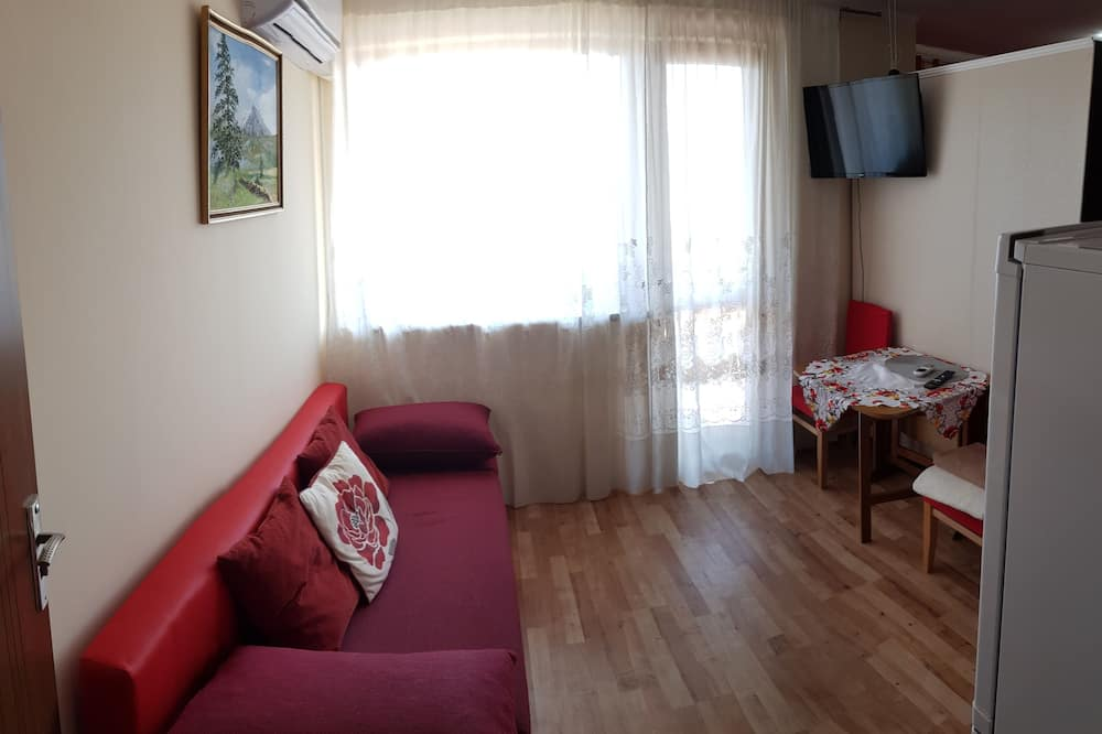 Comfort Apartment, 1 Double Bed with Sofa bed, Kitchen, City View - Living Area