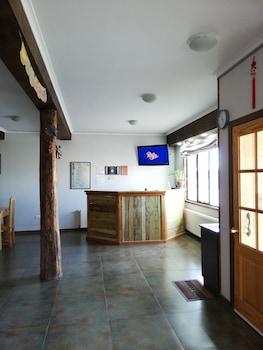 納塔萊斯港拉貝斯青年旅舍的相片