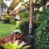 Habitación de lujo - Vista al jardín