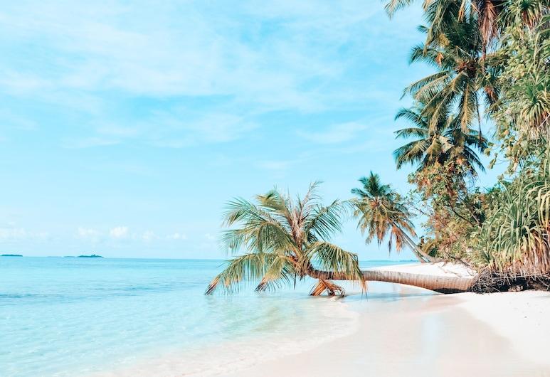 Bliss Dhigurah, Dhigurah, Playa