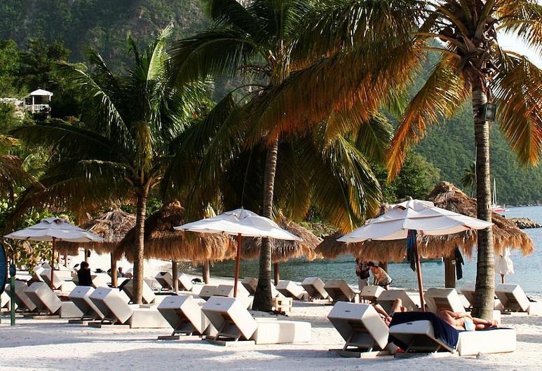 تروبيكانا بيتش آند ريزروت, مونروفيا, الشاطئ
