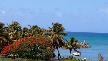 Le Gosier bölgesindeki Residence Palm Beach resmi