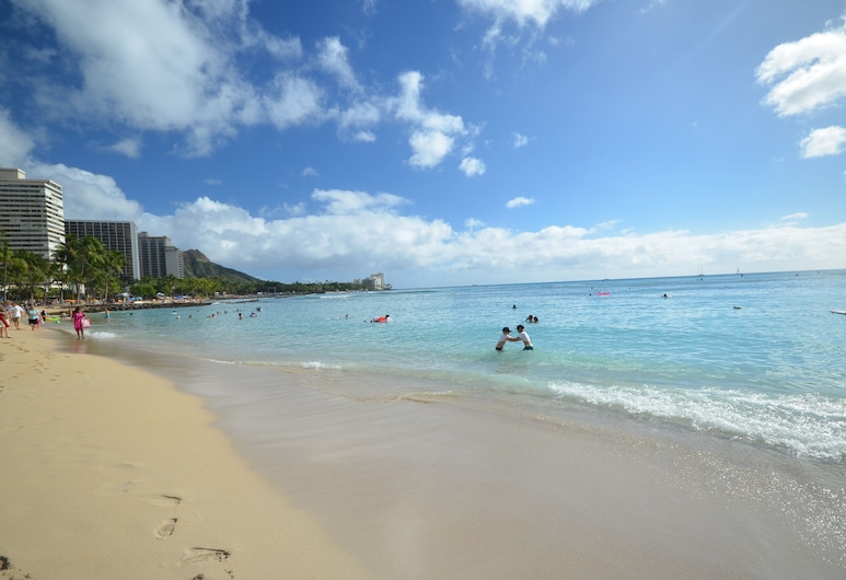 Sea Shore #41 by RedAwning, Honolulu, Apartment, 1 Bedroom, Beach