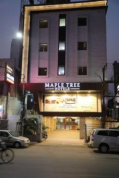 Фото Maple Tree Hotels у місті Ченнаі