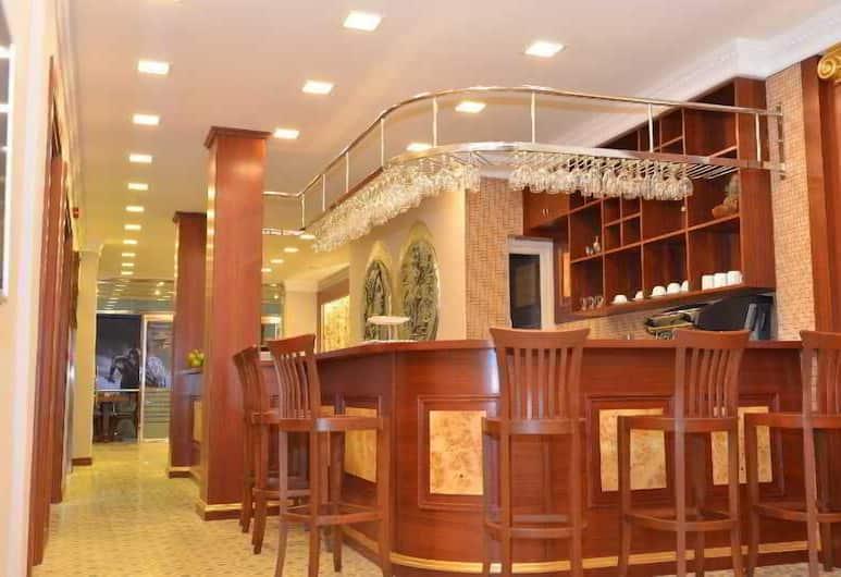 Nisantasi Troya Stroy, Istanbul, Otel Barı