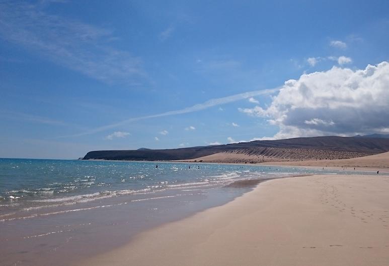 Morro Jable 50M Beach, 70 M2 Terrace, Pedestrian Street, Shops AND Restaurant, Pajara, Beach