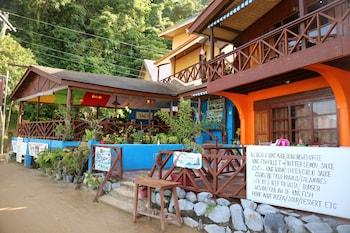愛妮島愛妮島餐廳旅館的相片