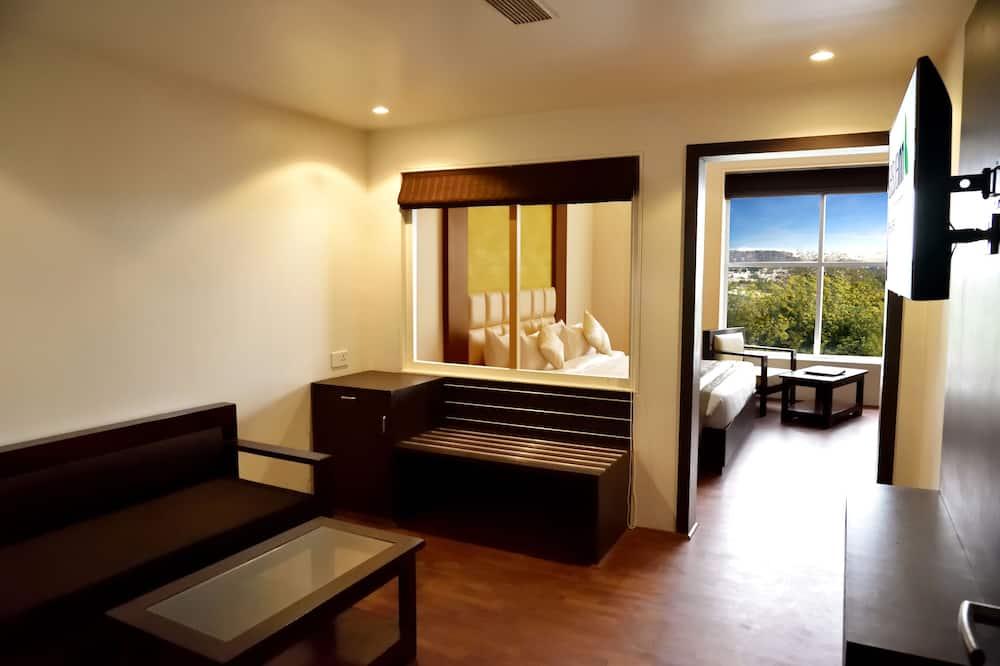 Business-suite - 1 queensize-seng - byudsigt - Stue