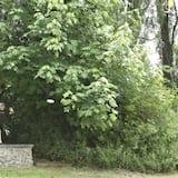 高爾夫球場景