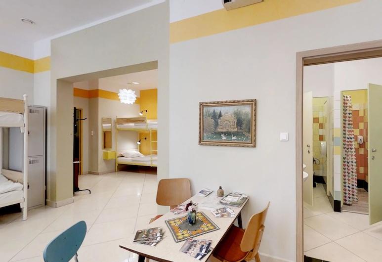 Press Hostel, Varsovia, Dormitorio compartido estándar, solo para mujeres, Habitación