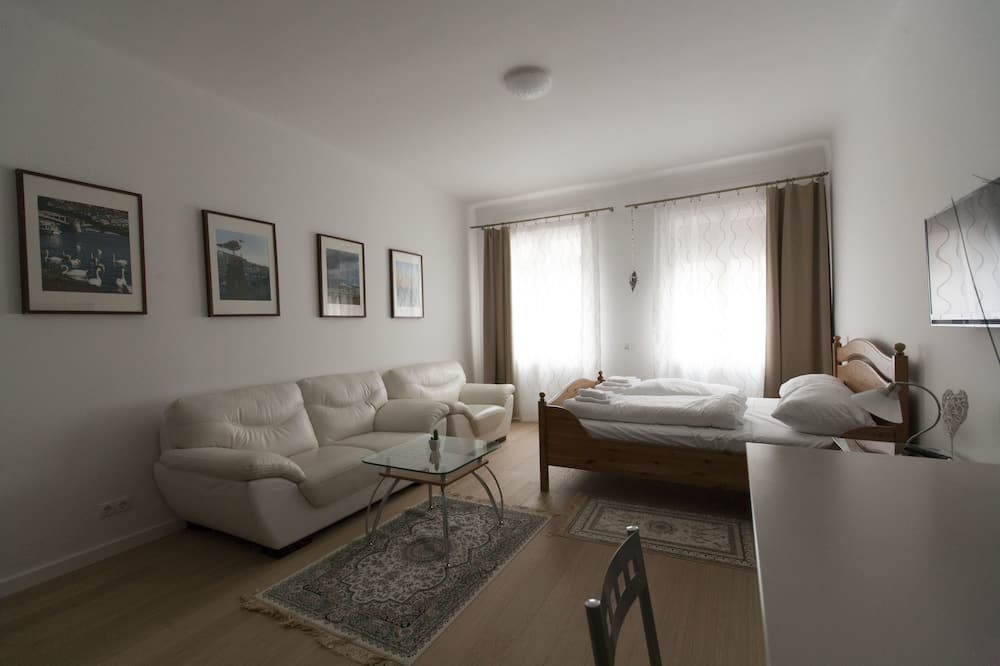 Deluxe Studio, Terrace, City View (including € 43 cleaning fee ) - Living Area