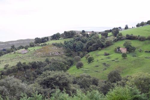 Cabaña