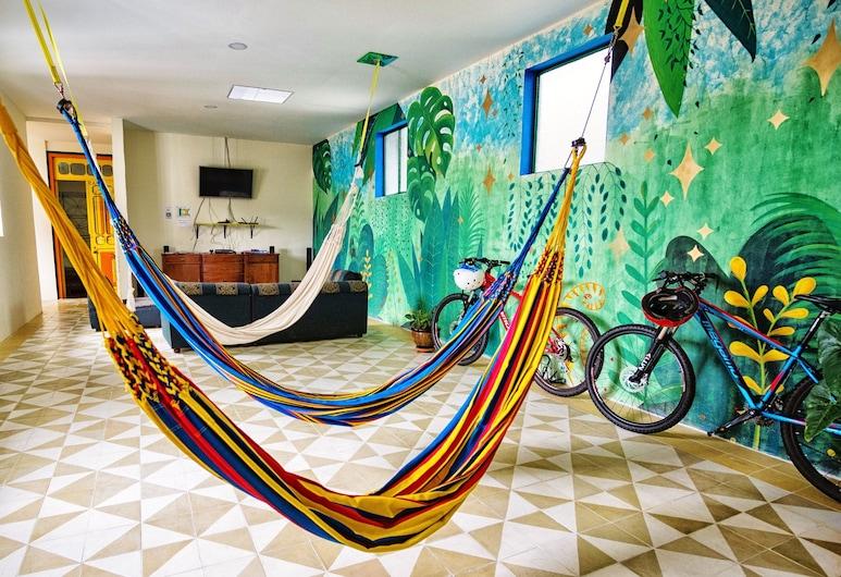 Golden Frog Mountain Hostel, Manizales, Lobby Sitting Area