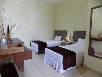 Naktsmītnes Hotel Dos Lobos attēls vietā San Miguel de Allende