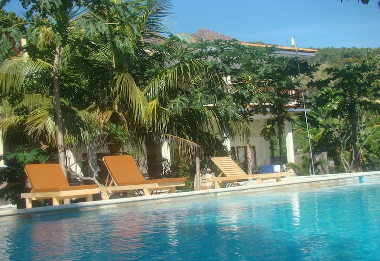 Villa Taman Padi, Karangasem, Hồ bơi