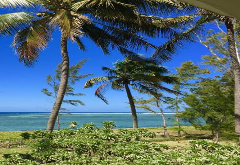 Villa Michou, Surinam, Jardín