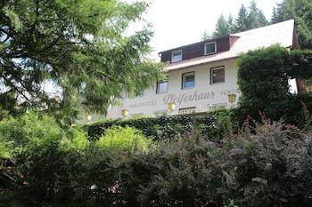 Picture of Waldpension Pfeiferhaus in Warmensteinach