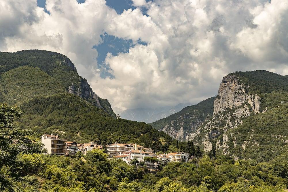 全景雙人房 (Olympus View) - 山景