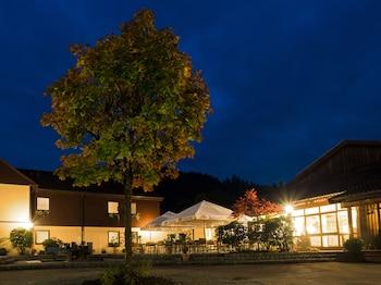 Picture of WAGNERS Hotel im Frankenwald in Steinwiesen