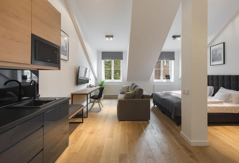 BC 29 Residence, Krakau, Deluxe-Studio, Eigene Küche