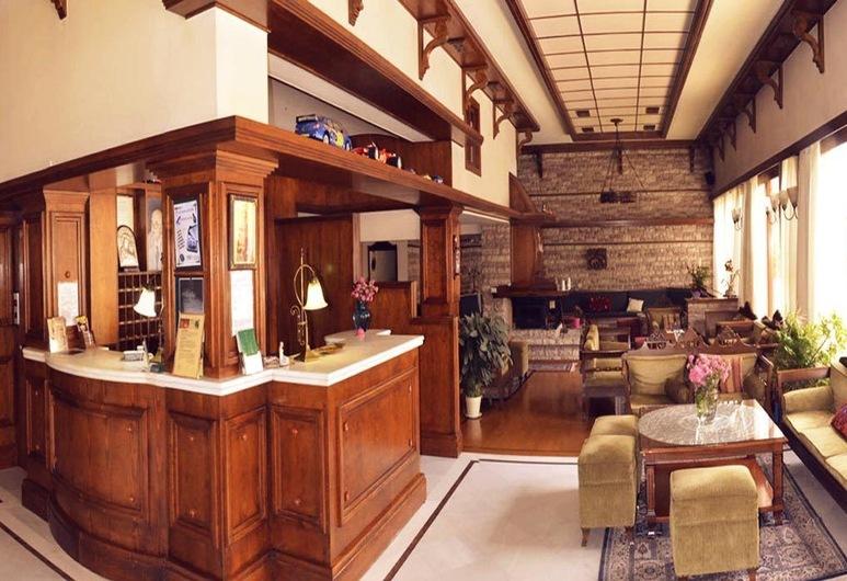 Hotel Elvetia, Karpenisi, Reception