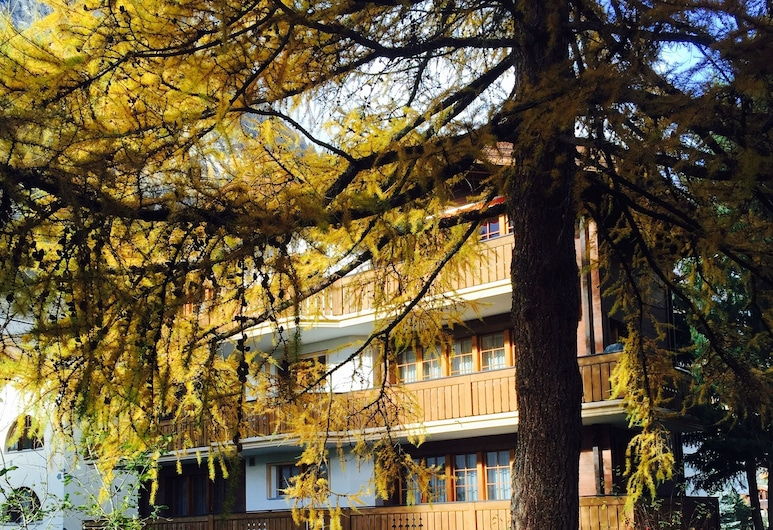 Haus Ares, Zermatt, Property Grounds