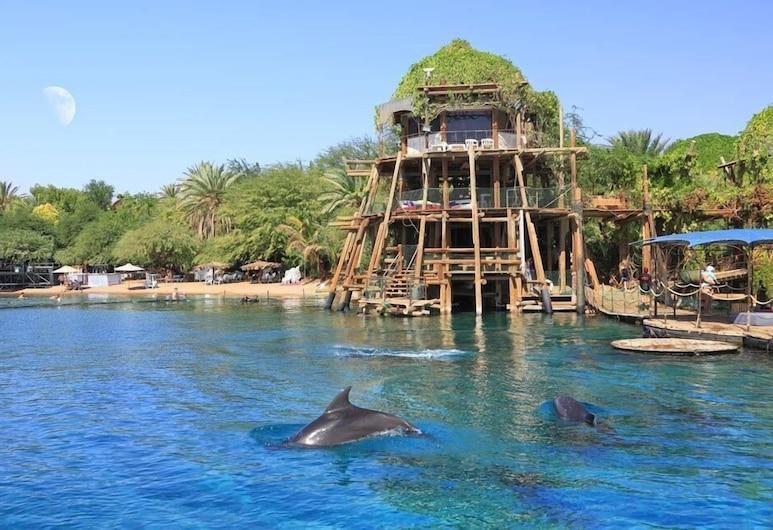 Blue Hotel Eilat, Eilat, Playa