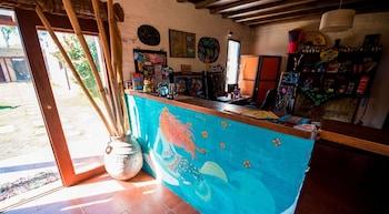Picture of Mundaka Hostel - Adults Only in Punta del Este