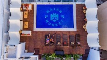 Cancun bölgesindeki Nomads Hostel & Bar Cancun resmi